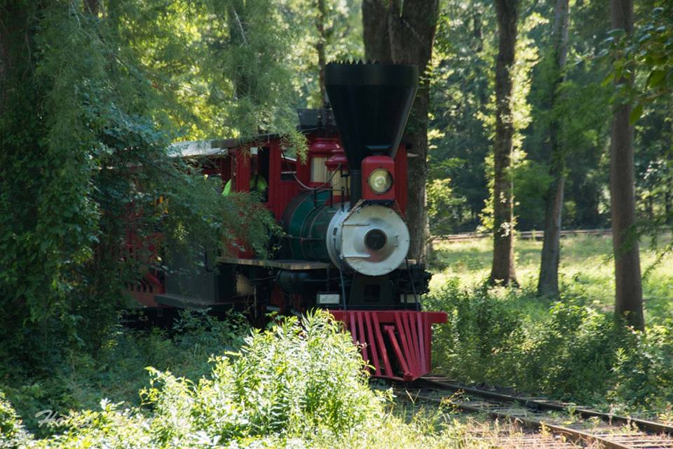 Steam Train on Big Cypress Bayou